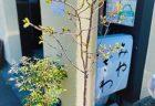 茨城県大洗 月の井