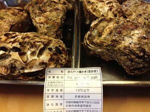 岩牡蠣2_R