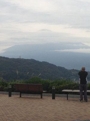 静岡に行ってきました
