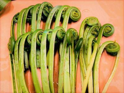 春野菜たち